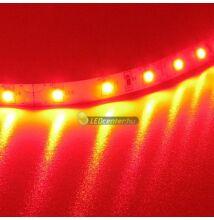 AURORA 60 SMD3528 4,8 W/m beltéri LED szalag, piros 2évG